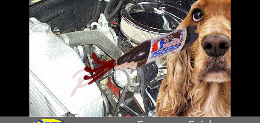 Frowup Friday: My dog poured Pepsi in the crankcase